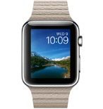 Apple Watch 42mm Stainless Steel Case with Stone Leather Loop - Medium MJ432VN/A