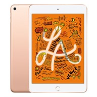 iPad Mini 5 7.9 Wi-Fi 256GB