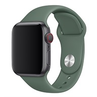 Apple Dây đeo Apple Watch 40mm cao su Pine Green